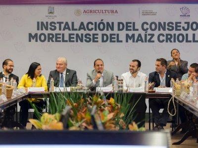 """<a href=""""/noticias/instala-cuauhtemoc-blanco-el-consejo-morelense-del-maiz-criollo"""">Instala Cuauhtémoc Blanco el Consejo Morelense del Maíz Criollo</a>"""